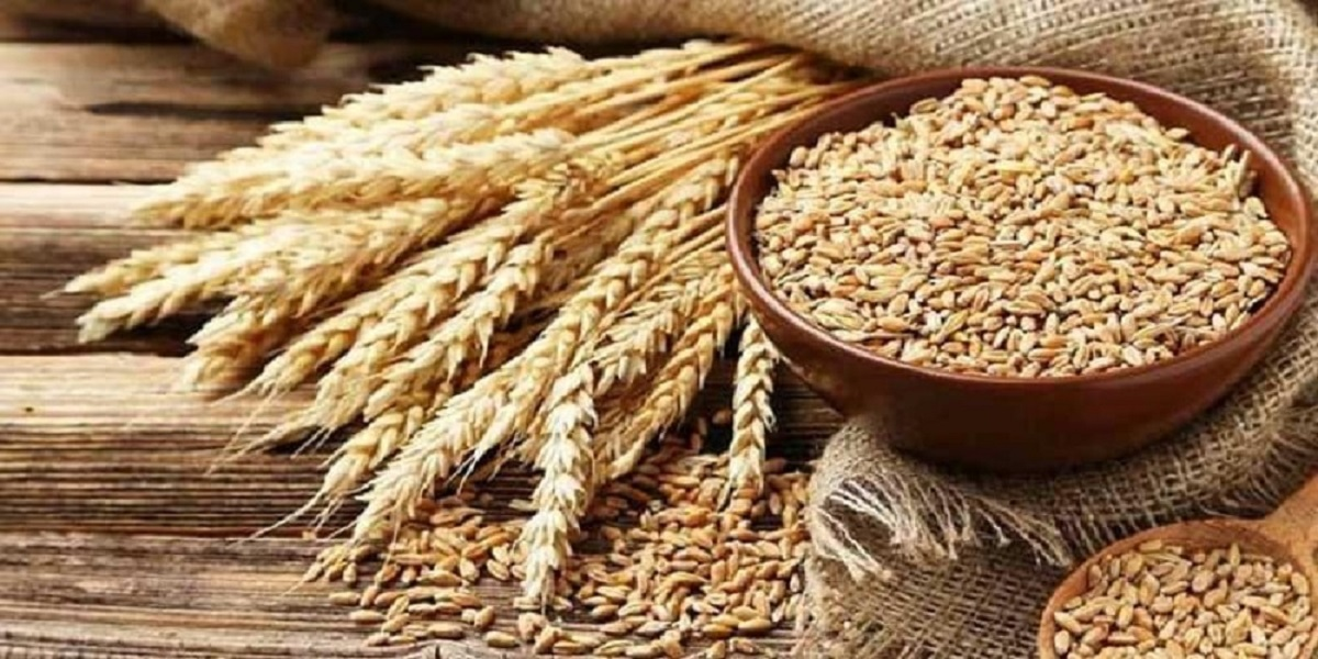 Pakistan plans to import 500,000 tonnes of wheat to meet demand
