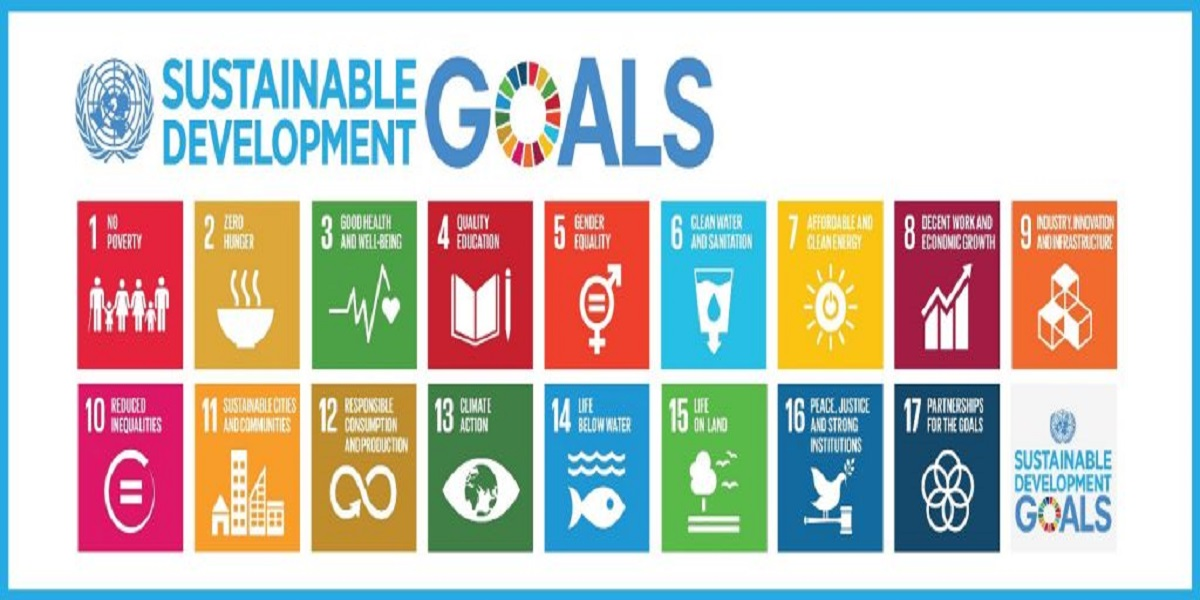 Pakistan seeks support for middle-income countries to achieve SDGs