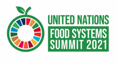 UN Food System