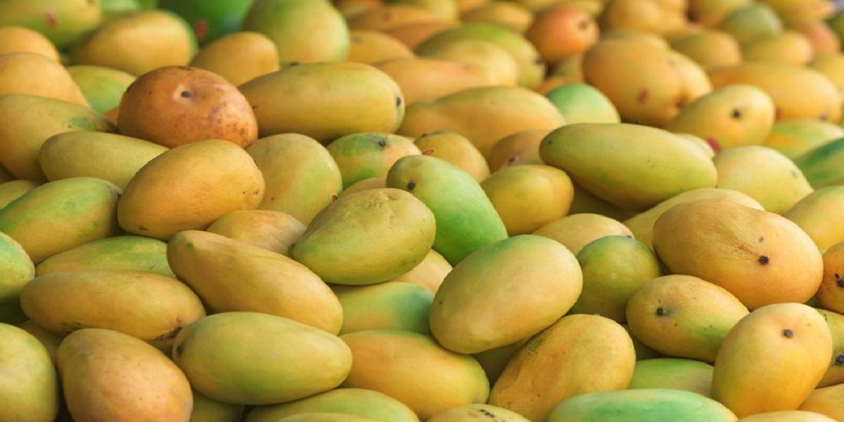 Pakistan expects mango exports of up to 160,000 tonnes this year: adviser