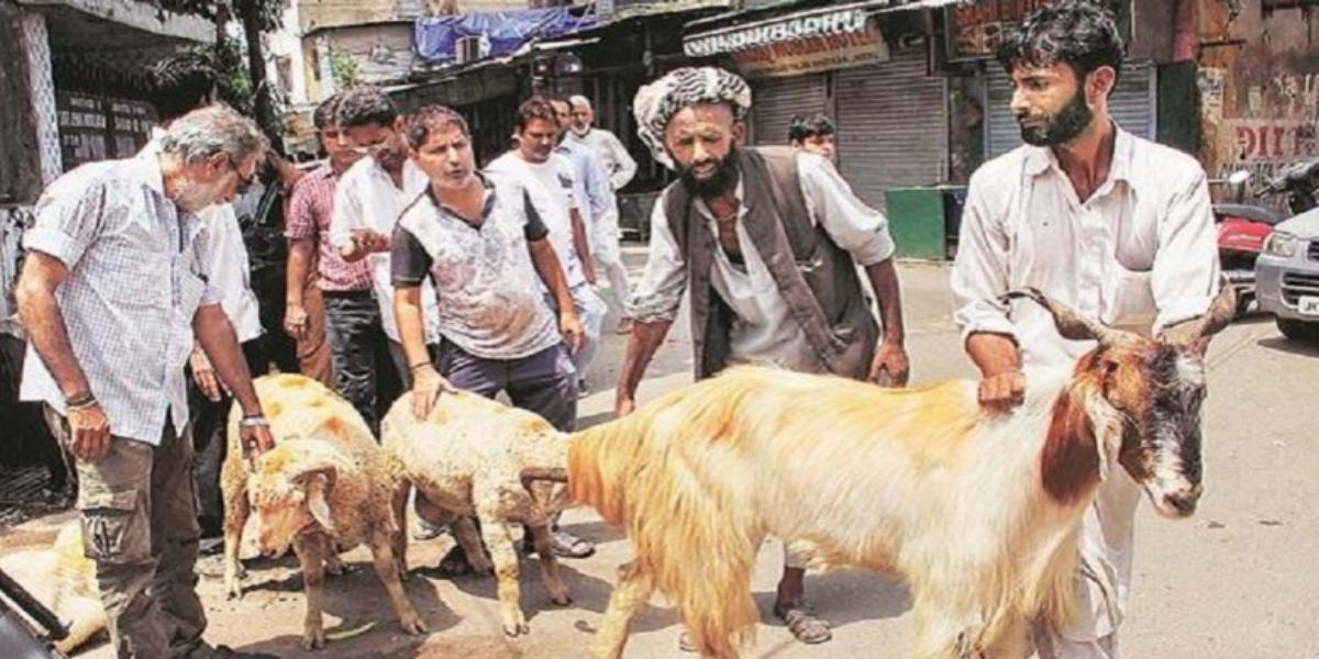 Occupied Kashmir: Decision To Ban Animal Sacrifice On Eid-ul-Adha Reversed