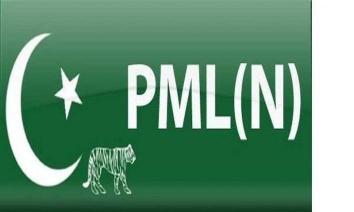 pmln flag