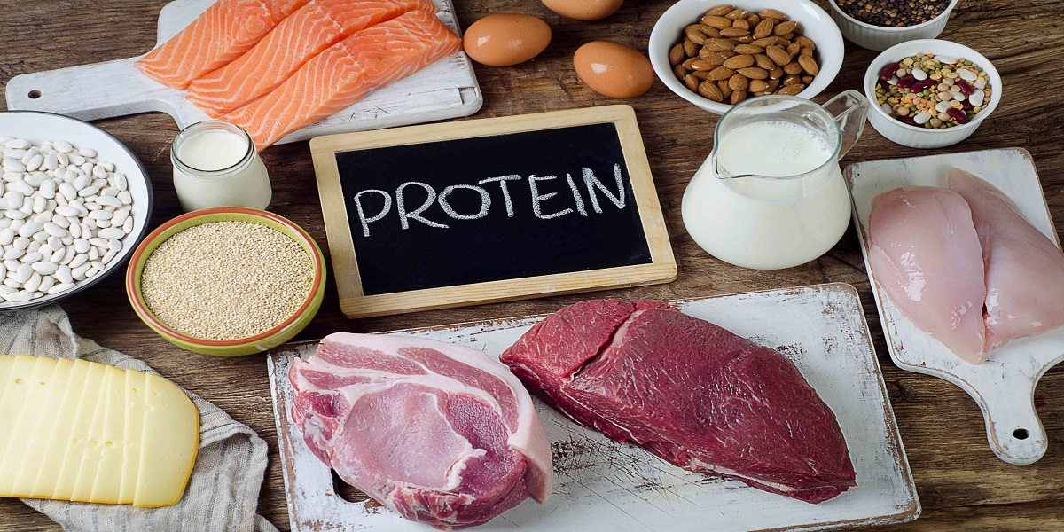 6 High protein foods for weight loss