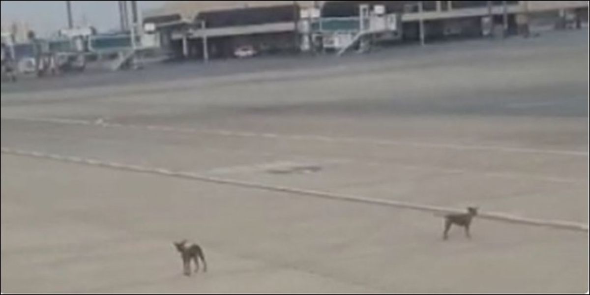 Karachi airport