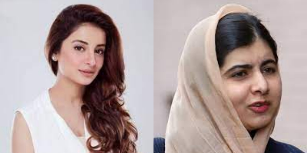 celebrities beg for Afghans' protection.