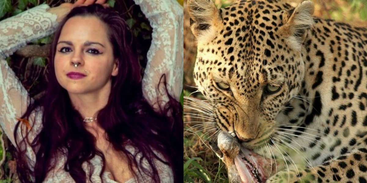 Model attacked by leopard