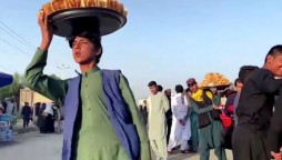 afghan food crisis