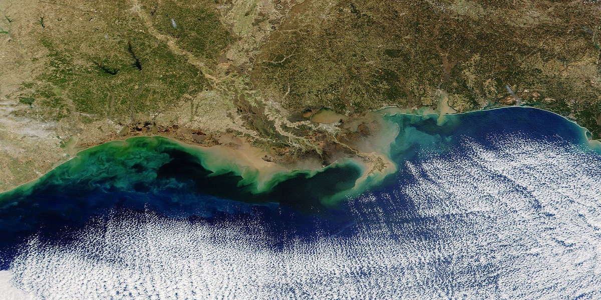 """A large """"dead zone"""" in the Gulf of Mexico, an area of low to no oxygen"""