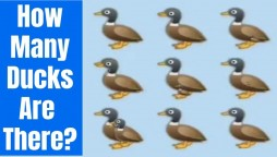 this riddle stumped so many on social media gone viral