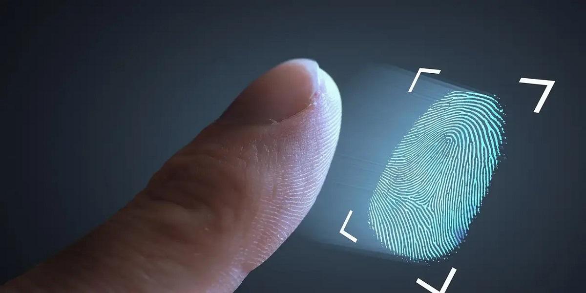 Contactless biometric verification service