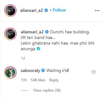 Ali Ansari Saboor Aly