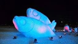 Sculptures made entirely from plastic bottles on the beaches Rio De Janerioof