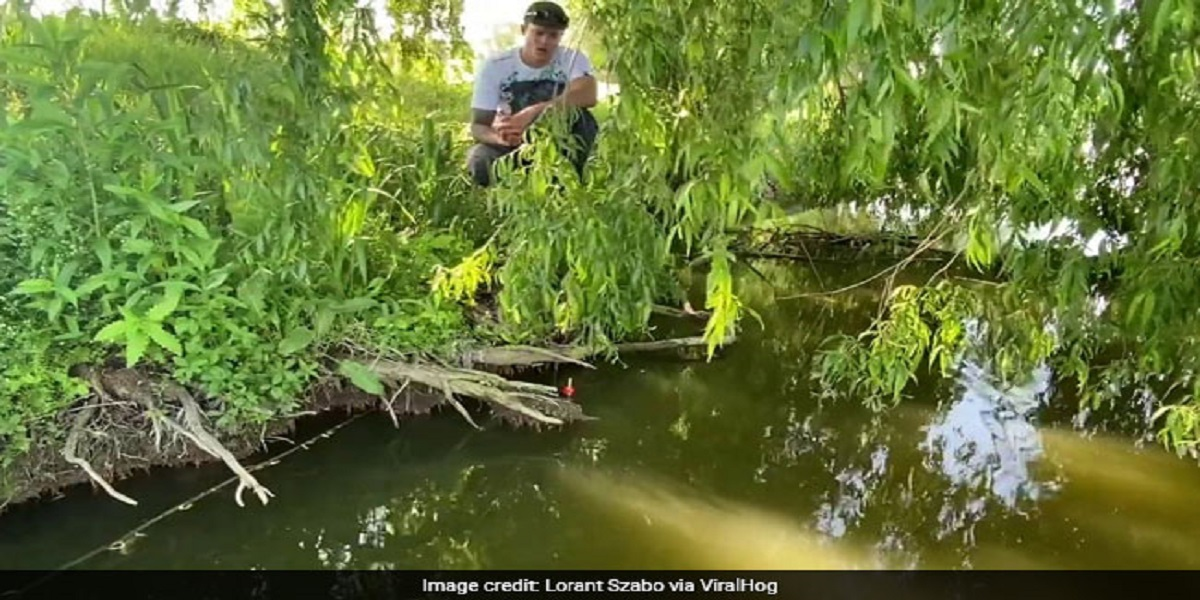 Watch: Fisherman is dragged into a lake by a huge fish