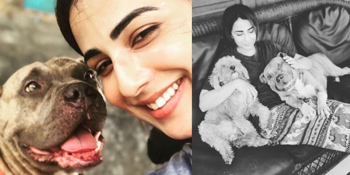 Ushna Shah pet dog's birthday