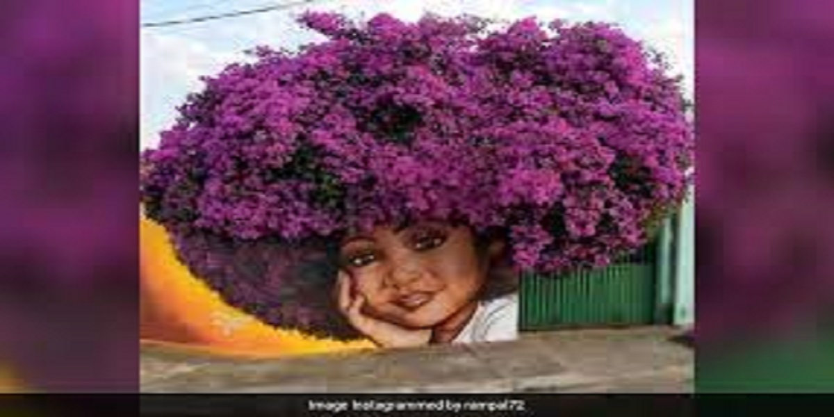 Arjun Rampal gives a shout-out to Brazil's incredible street art