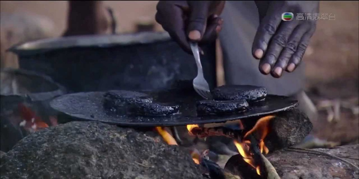 African 'Nutritious Burger Patty' is made from 500,000 Flies