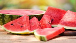 Watermelons record set by a female bodybuilder