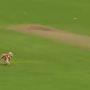WATCH: Dog enters the ground and runs away with the ball