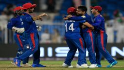 Spin warning: Mujeeb bags five as Afghanistan crush Scotland by 130 runs