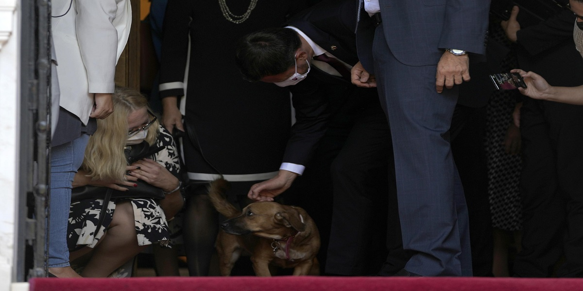The Greek Prime Minister's dog disrupts a press conference