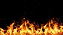 Seven people of same family burnt alive in house fire