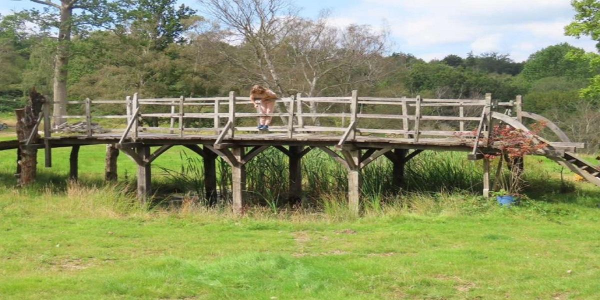 Ashdown Forest's original Winnie-the-Pooh bridge is up for auction