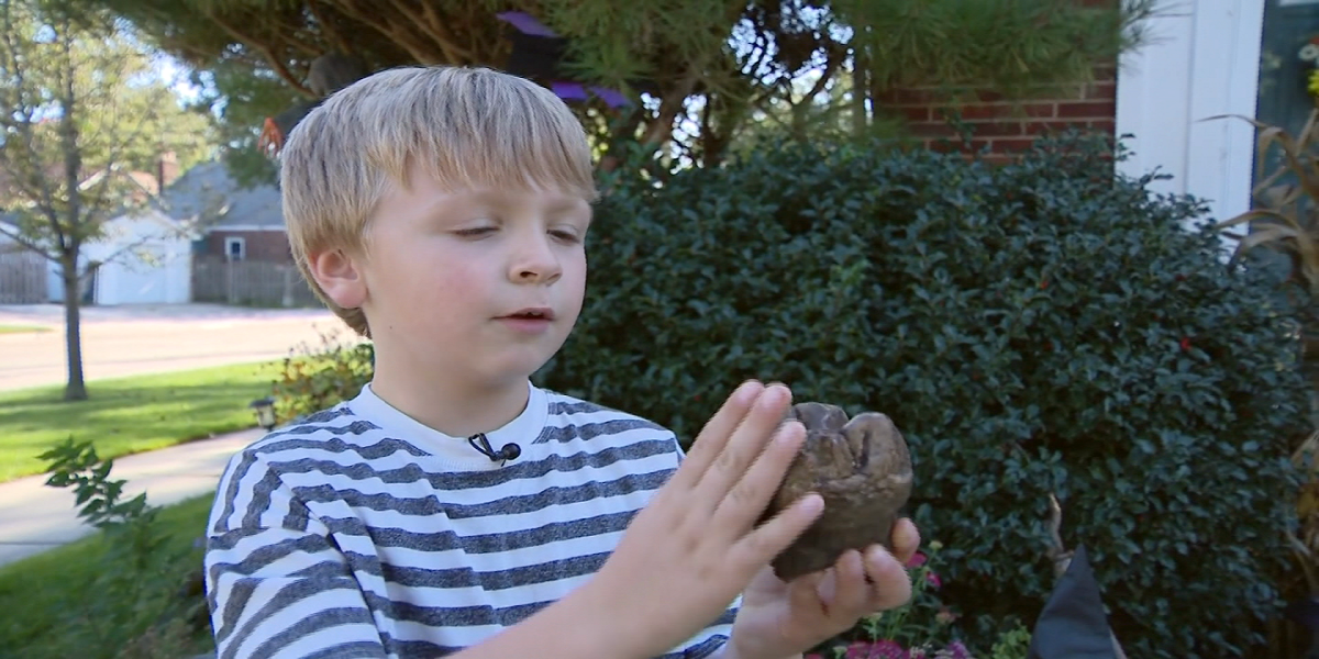 Michigan: 6-year-old discovers mastodon tooth nature preserve